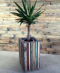 Unique planter